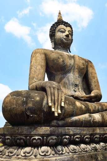 Thai26